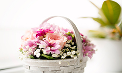 Fresh flowers &<br> Welcome baskets